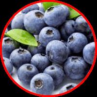ekstrak blueberry