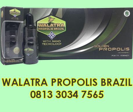 walatra propolis brazil